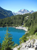 Lake  Switzerland. With forest and mountain Royalty Free Stock Photos
