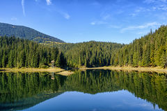 Lake Synevir. Royalty Free Stock Photo