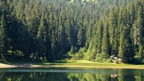 Lake Synevir in Carpathian Mountains in Ukraine.  royalty free stock photos