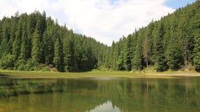 Lake Synevir in Carpathian Mountains, Ukraine stock video footage