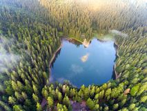 Aerial view of Lake Synevir in Carpathian Mountains in Ukraine royalty free stock images