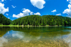 Lake Synevyr Royalty Free Stock Photography