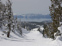 Lake Tahoe Imagem de Stock Royalty Free