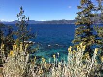 Lake Tahoe Immagini Stock Libere da Diritti