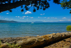 Lake Tahoe Beach at Taylor Creek Stock Image