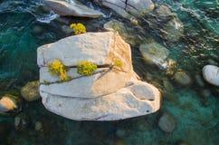 Lake Tahoe Bonsai Rock. At sunset shot by drone stock image