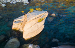 Lake Tahoe Bonsai Rock. At sunset shot by drone Royalty Free Stock Photography