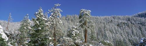 Lake Tahoe, California in winter Royalty Free Stock Photo