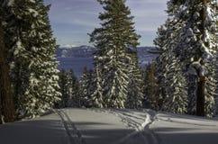 Lake Tahoe da Northstar Fotografia Stock