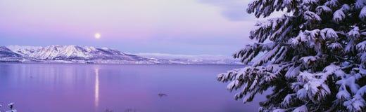 Lake Tahoe efter snowstorm royaltyfri fotografi