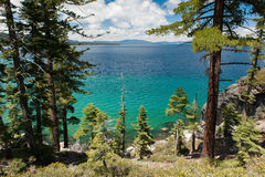 Lake Tahoe through the pine trees view Stock Photos