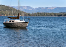 Lake Tahoe sail boat Royalty Free Stock Images