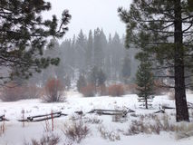 Lake Tahoe Snow Storm. Snowing at Lake Tahoe with hill view during Winter Royalty Free Stock Photo
