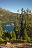 Lake Tahoe Through Trees Royalty Free Stock Photos