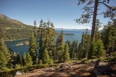 Lake Tahoe Through Trees. Lake Tahoe through evergreen trees Stock Photo