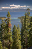 Lake Tahoe Through Trees. With mountains in background stock photos