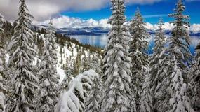 Lake Tahoe vinter Royaltyfria Foton
