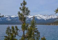 Lake Tahoe vinter Arkivfoton