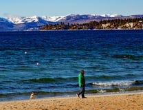 Lake Tahoe vinterutsikt Arkivbild