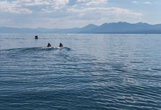 Lake Tahoe watercraft Royalty Free Stock Image