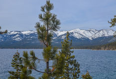 Lake Tahoe in winter. Amazing view of Lake Tahoe shore in winter Stock Photos