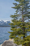 Lake Tahoe in winter. Amazing view of Lake Tahoe shore in winter Royalty Free Stock Photography