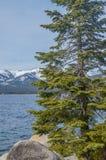 lake tahoe zimy Fotografia Royalty Free
