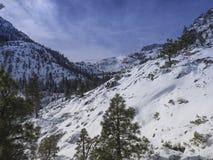 Lake- Tahoebergabhang-Schnee Stockbilder