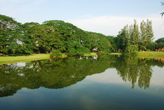 lake taiping Arkivbilder