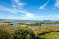 Lake Takern. In southern Sweden is one of Europe's foremost bird lakes due to it's low average depth of only 0,8 meters Royalty Free Stock Images