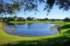 A lake in Tampa. A beautiful lake in Tampa, Florida Stock Photo