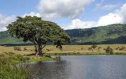 Lake in Tanzania Stock Photo