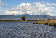 Lake in Tanzania Stock Photography