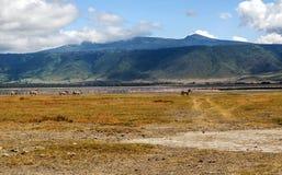 Lake in Tanzania Stock Photos