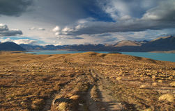 Lake Tekapo Royalty Free Stock Image