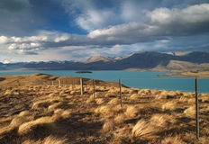 Lake Tekapo Stock Photos