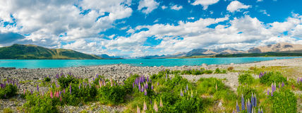 Lake Tekapo Royaltyfri Bild