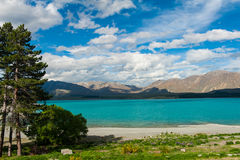 Lake Tekapo Royalty Free Stock Images