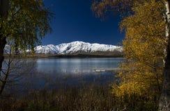 Lake Tekapo Stock Images