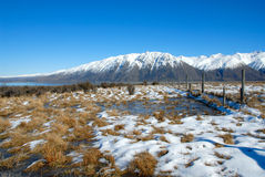Lake Tekapo and Hall Range, NZ Royalty Free Stock Photo