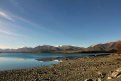 Lake Tekapo i vinter Royaltyfri Fotografi