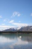 Lake Tekapo New Zealand. Rocky shore of Lake Tekapo New Zealand Royalty Free Stock Image