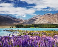 Free Lake Tekapo, New Zealand Stock Photography - 127236652