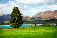Lake Tekapo, New Zealand Royalty Free Stock Photography