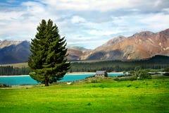 Lake Tekapo, New Zealand Royalty Free Stock Photography