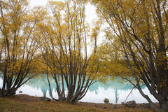 The Lake Tekapo. In New Zealand Stock Photo