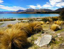 Lake Tekapo, New Zealand. Breathtaking blue glacial Lake Tekapo. South Island, New Zealand Royalty Free Stock Photos