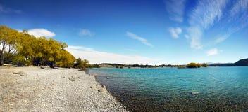 Lake Tekapo, New Zealand. Lakeside and trees. Lake Tekapo. South Island, New Zealand Royalty Free Stock Photos
