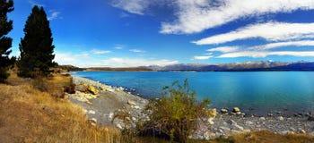 Lake Tekapo, New Zealand. Lakeside and trees. Lake Tekapo. South Island, New Zealand Royalty Free Stock Photography