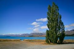 Lake Tekapo New Zealand in Summer Royalty Free Stock Photography